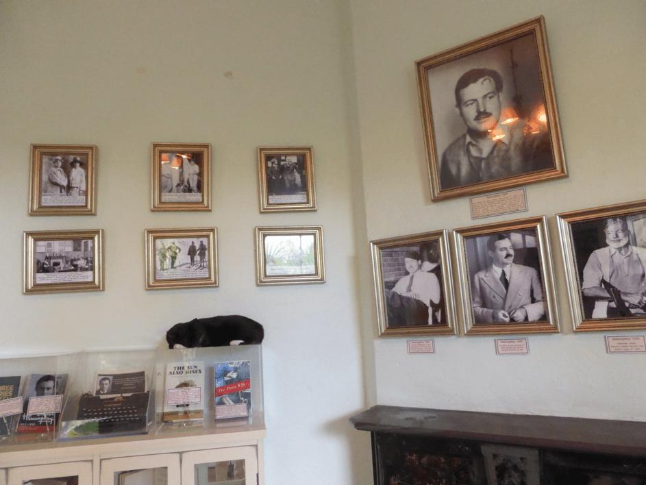 Visite de la maison de Hemingway et de ses souvenirs en photos