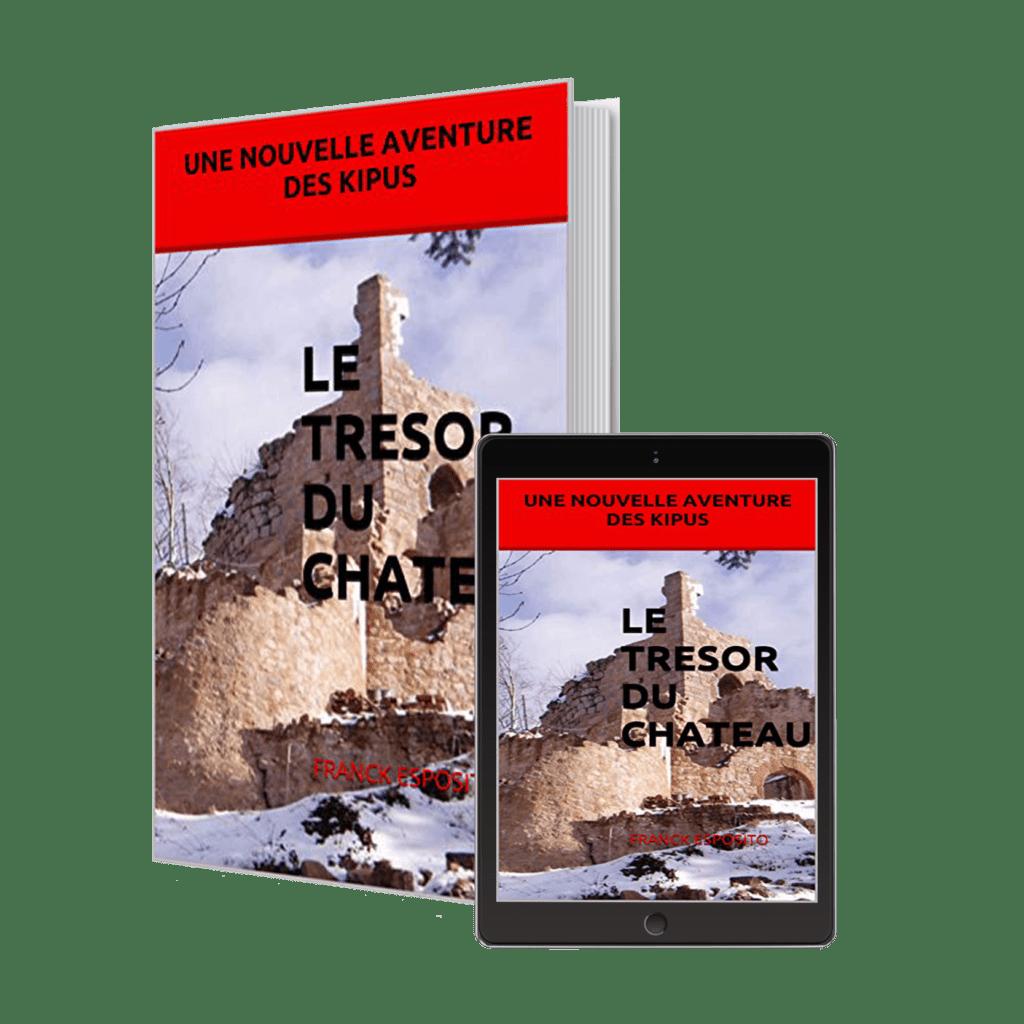 Le trésor du château par l'auteur Esposito Franck